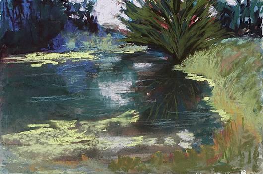 Dark Pond by Jennifer Robin