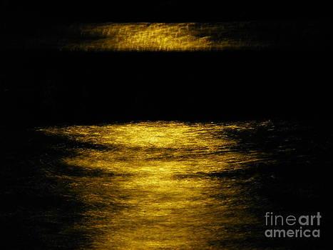 Dark Pool by Tyler Ash