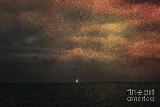 Dark shore II by Elisabete Companion