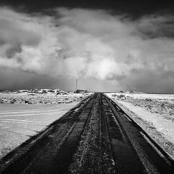 Dark by Thomas Berger