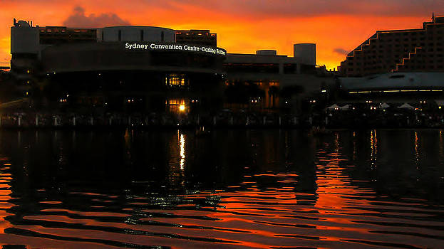 David Rich - Darling Harbour Evening