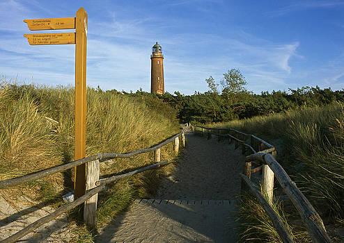 Darss lighthouse Mecklenburg Vorpommern Germany  by David Davies
