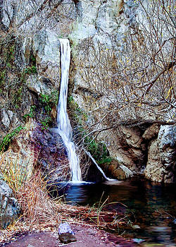 Darwin Falls Death Valley by Bob and Nadine Johnston