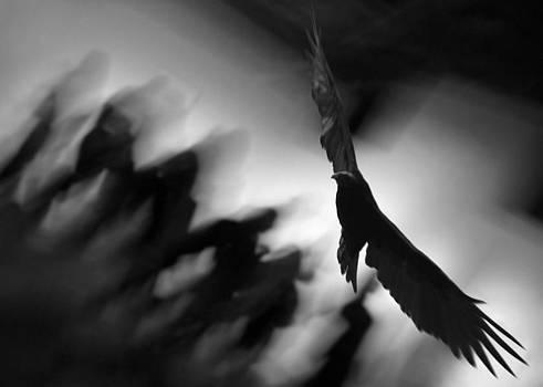 Das Jenseits by Mirza Ajanovic