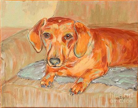 Daschund Portrait by Jeanne Forsythe