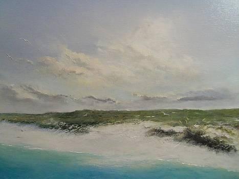 Dauphin Island by James Neeley