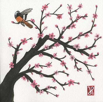 Daurian Redstart by Jamie Seul