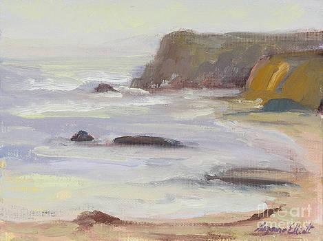 Davenport Cliffs California by Suzanne Elliott