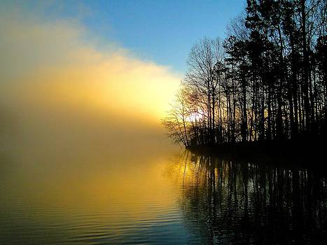 Dawn at Waters Edge by Cindy Croal