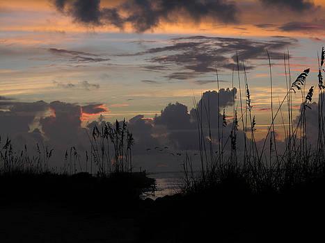 Dawn Cloud Cover 1   by Julianne Felton