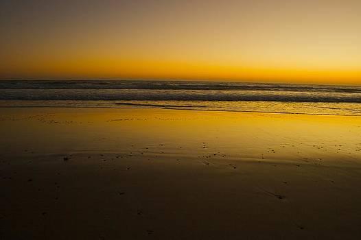 Dawn on the Beach by Shane Dickeson