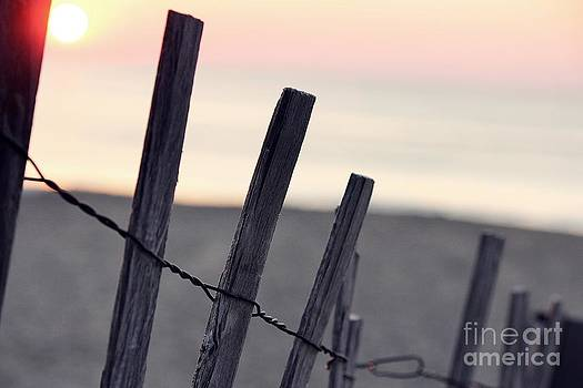 Dawn by Patrick Rodio