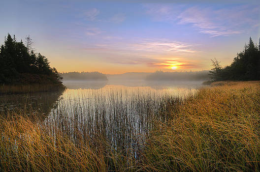 Dawn's Early Light by Spencer Dove