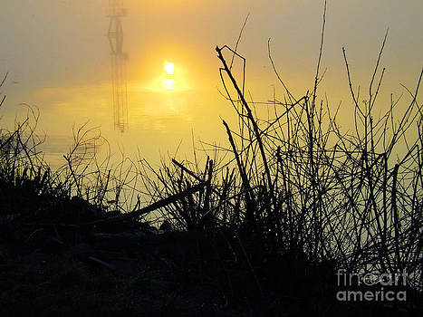 Robyn King - Daybreak
