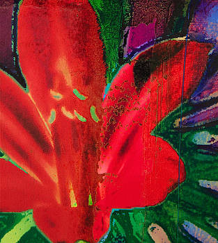 Day Lily Red by Yvonne Gaudet