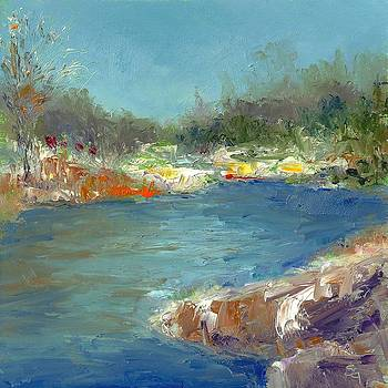 Shannon Grissom - Day On The River