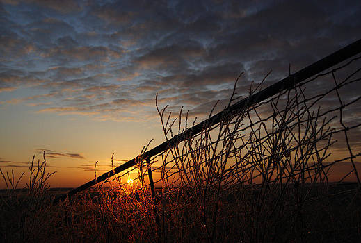 Daybreak by Jann Kline