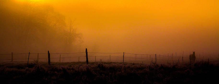 Daybreak by Pandyce McCluer
