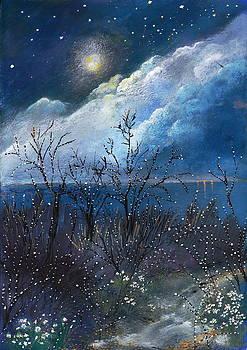 Daydream by Milenka Delic