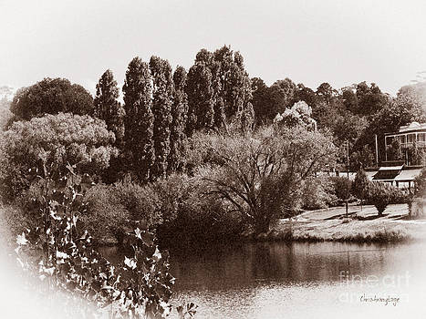 Daylesford Lake II by Chris Armytage