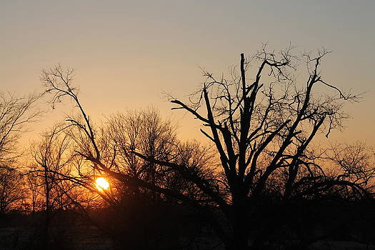Daylight Savings Sunrise by Lorri Crossno