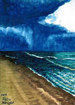 Daytona Beach by Shara  Wright