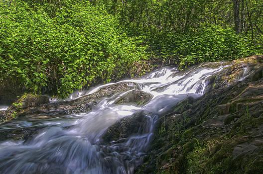 Deadman Creek by Sherri Meyer