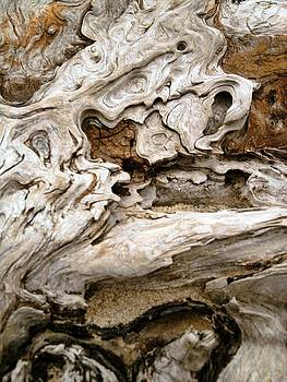 Deadwood Dragon by Andrew  Stoffel