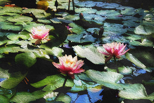 Dear Monet by Kim Thompson