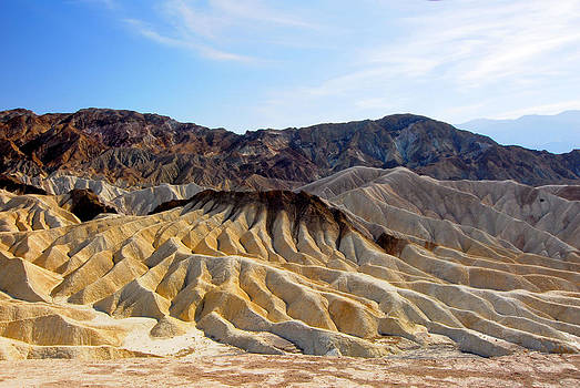 Death Valley National Park artists palette by Bhupendra Singh
