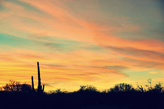 December Sunset Arizona Desert by Jon Van Gilder