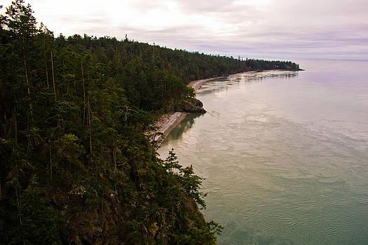 Deception Pass Coastal View  by Blanca Braun