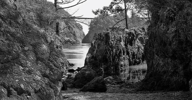 Deception Pass Study by Rick Lawler