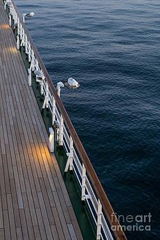 Anne Gilbert - Deck Sea