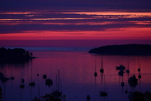 Deep blue pink and purple sunrise by Dana Moos