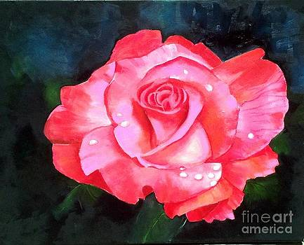 Deep Pink Rose by Elaine Callahan