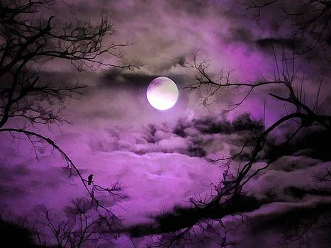 Gothicrow Images - Deep Purple Sky