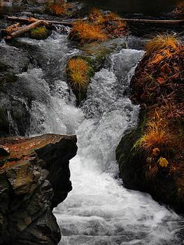 Frank Wilson - Deer Creek Cascade
