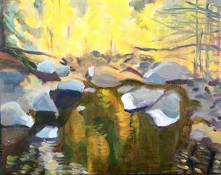 Deer Creek in November by Molly Fisk