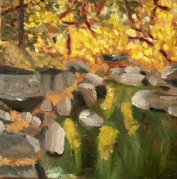 Deer Creek November II by Molly Fisk