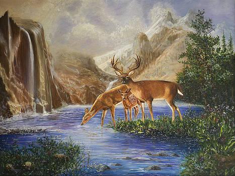 Deer in Spring by Megan Morris Collection