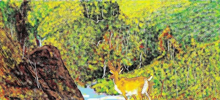 Deer In The Well by Nixon Mwangi