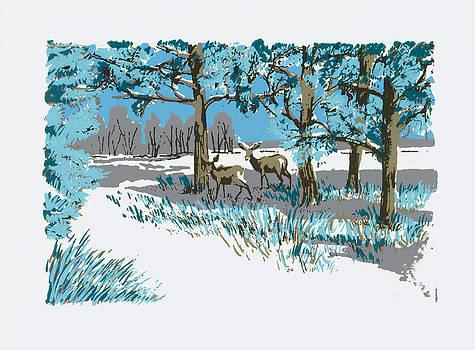 Deer in the Woods by Barbara Lightner