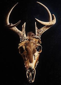 Joy Bradley - Deer Skull