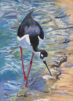 Del Mar Stilt by Darlene Luckins