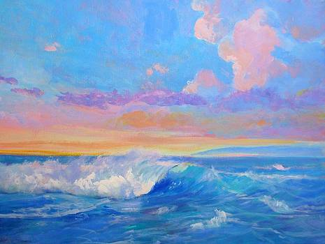 Del Mar Sunset by Jim Noel