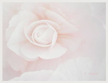 Delicate Shade of Pale by Pat Edsall