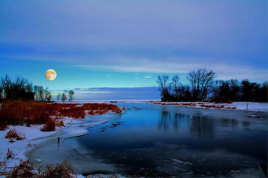 Delta Beach Channel by Larry Trupp