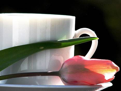 Angela Davies - Demitasse and Tulips