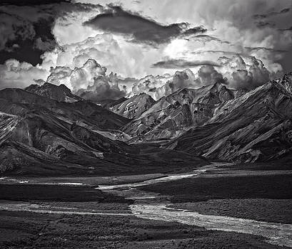 Denali 1 - Mountains Braided River by Michael Berry